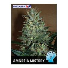 Amnesia Mistery Feminised 5kom pos