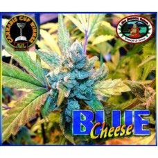 BLUE CHEESE 5 kom BBS