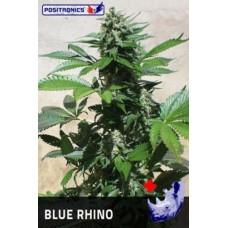 Blue Rhino Feminised 5 kom POS