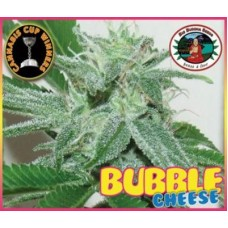 BUBBLE CHEESE 5 kom BBS
