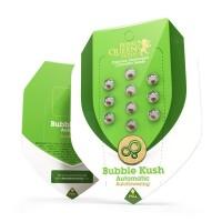 Bubble Kush Auto 3 kom RQS