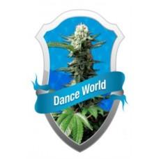 DANCE WORLD MEDICAL 3 kom. RQS