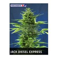 Jack Diesel Express 5kom pos