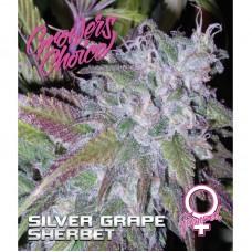 Silver grape sherbet fem 3 kom. G.C.
