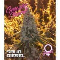 Sour Diesel fem 5 kom. G.C.