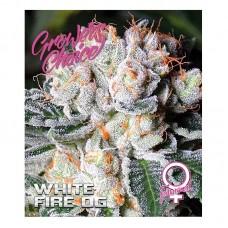White fire OG 3 kom. G.C.