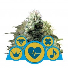 CBD Medical Mix fem. 3 kom. RQS
